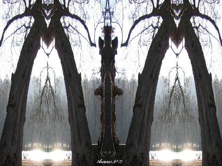antarion_fotografie_natur_image002