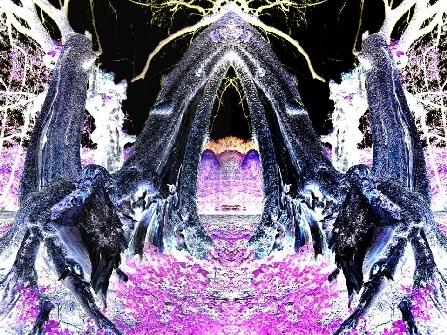 antarion_fotografie_natur_image004