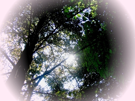 antarion_fotografie_natur_image013