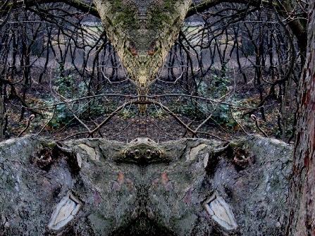 antarion_fotografie_natur_image017