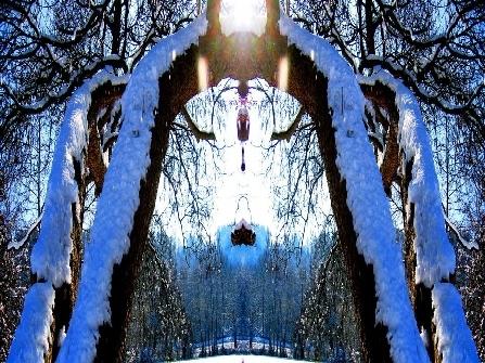 antarion_fotografie_natur_image019